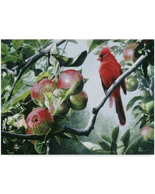 """Trademark Art 'Cardinal And Apples' Graphic Art Print on Wrapped Canvas ALI32558-CGG Size: 24"""" H x 32"""" W x 2"""" D"""
