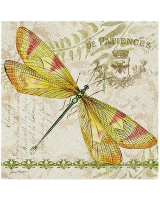 """Trademark Fine Art 'Dragonfly Daydreams 4' Graphic Art Print on Wrapped Canvas ALI37335-CGG Size: 35"""" H x 35"""" W x 2"""" D"""