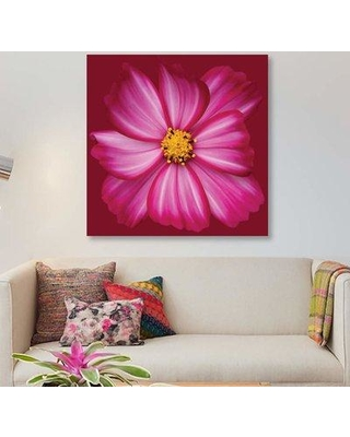"""East Urban Home 'Cosmos' Graphic Art Print on Canvas EBHT1519 Size: 18"""" H x 18"""" W x 0.75"""" D"""