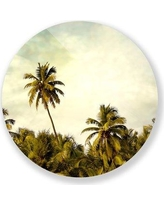 "Two Palms Art Bazaar 'Palm Tree Supreme' Photographic Print 1149Plexi Size: 46"" H x 46"" W x 1"" D"