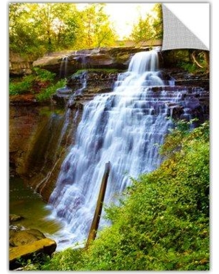 """ArtWall 'Brandywine Falls' by Cody York Photographic Print Removable Wall Decal 0yor009ap Size: 48"""" H x 32"""" W x 0.1"""" D"""