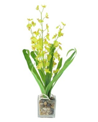 """23.5"""" Potted Artificial Yellow Dancing Lady Orchid Silk Flower Plant"""