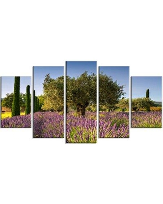 Design Art 'Beautiful Lavender and Olive Trees' 5 Piece Photographic Print on Wrapped Canvas Set PT12362-373