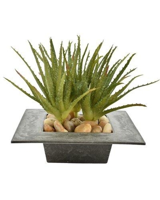 Wrought Studio Agave Succulent in Pot W001650728