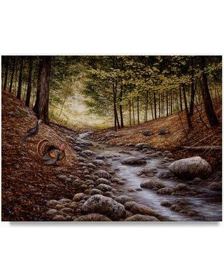 """Trademark Fine Art 'Gobbler Run' Oil Painting Print on Wrapped Canvas ALI21212-C Size: 18"""" H x 24"""" W"""