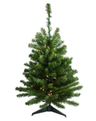 Northlight 3' Pre-Lit Canadian Pine Artificial Christmas Tree - Clear Lights