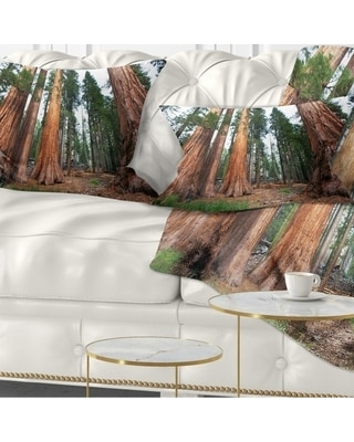 Designart 'Three Large Sequoya Trees' African Landscape Printed Throw Pillow (Rectangle - 12 in. x 20 in. - Medium)