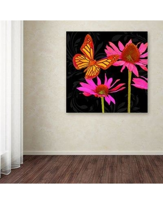 """Ebern Designs 'Color Pop II' Graphic Art Print on Wrapped Canvas EBND8097 Size: 18"""" H x 18"""" W"""