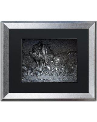 """Trademark Art 'Window Frost at Night 3' Framed Photographic Print on Canvas KS01239-S1 Size: 16"""" H x 20"""" W x 0.5"""" D Matte Color: Black"""