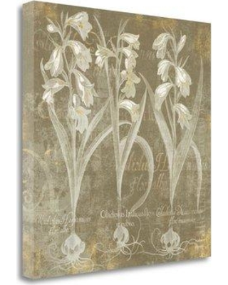 """Tangletown Fine Art 'Flower Lines I' by Sue Schlabach Graphic Art on Wrapped Canvas WA618974-1818c Size: 20"""" H x 20"""" W"""