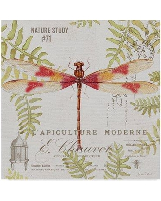 """Trademark Art 'Botanical Dragonfly 4' Graphic Art Print on Wrapped Canvas ALI37334-CGG Size: 35"""" H x 35"""" W x 2"""" D"""