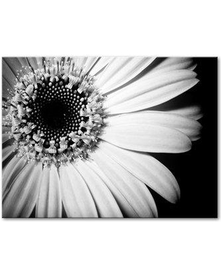 """Ebern Designs 'Simple Elegance' Photographic Print on Wrapped Canvas BF182251 Size: 20"""" H x 30"""" W x 2"""" D"""