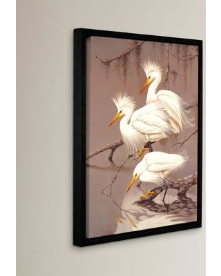 Bay Isle Home Great White Herons Framed Photographic Print on Canvas BAYI5784 Size: 08'' x 10''