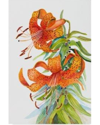 """Trademark Art 'Tiger Lilies' Graphic Art Print on Wrapped Canvas ALI30547-CGG Size: 47"""" H x 30"""" W x 2"""" D"""
