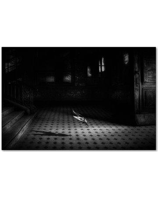 """Trademark Fine Art 'Chance Encounter' Photographic Print on Wrapped Canvas 1X03786-C Size: 30"""" H x 47"""" W"""