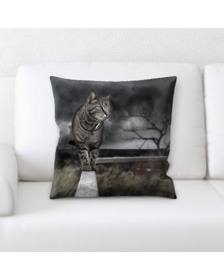 Don't Miss This Deal: East Urban Home Photo Manipulation Throw