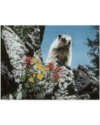 Get The Deal! 12% Off Trademark Art 'Young Marmot' Graphic ...