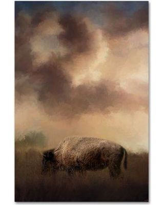 "Trademark Fine Art 'Bison Grazing at Sunrise' Graphic Art Print on Wrapped Canvas ALI14372-C Size: 47"" H x 30"" W"