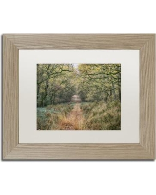 """Millwood Pines 'Autumn Walk' Framed Photographic Print MLWP9786 Size: 11"""" H x 14"""" W x 0.5"""" D Matte Color: Silver"""