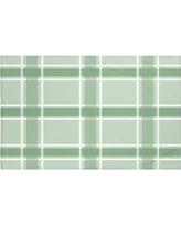 "Darby Home Co Reuben Plaid Print Throw Blanket DRBC6017 Size: 60"" L x 50"" W, Color: Pale Celery (Green)"