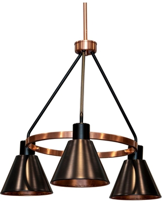 Decor Therapy Carly 3-Light Antique Brass and Black Iron Metal Chandelier