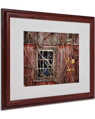 """Trademark Art """"Old Barn Window"""" by Lois Bryan Matted Framed Photographic Print LBr0231 Size: 16"""" H x 20"""" W x 0.5"""" D Frame: Brown - Beveled"""