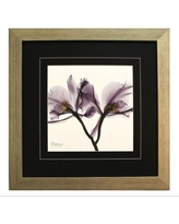 Pictures and Mirrors 'X-Ray Orchids in Purple' by Albert Koetsier Framed Painting Print 16325