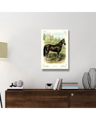 """East Urban Home 'The Horse 1900' Print on Wrapped Canvas ERNI9517 Size: 36"""" H x 24"""" W x 1.5"""" D"""