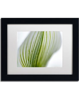 """Trademark Fine Art 'Orchid Abstract Blurred Lines' by Kurt Shaffer Framed Photographic Print KS110-B1 Size: 11"""" H x 14"""" W Matte Color: White"""