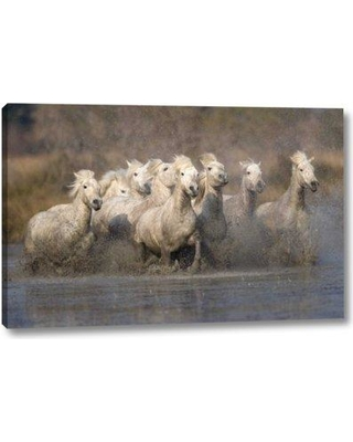 """Union Rustic 'France Provence White Camargue horses running' by Jim Zuckerman Giclee Art Print on Wrapped Canvas BF099723 Size: 20"""" H x 32"""" W x 1.5"""" D"""