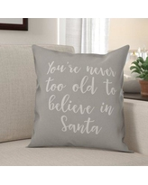 The Holiday Aisle® Benita Youre Never to Old to Believe in Santa Throw Pillow X111647210 Color: Gray Product Type: Throw Pillow