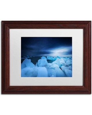 Trademark Fine Art 'Blue Monday' Canvas Art by Philippe Sainte-Laudy, White Matte, Wood Frame