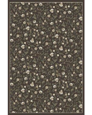 """Charlton Home Ackermanville Brown/Ivory Area Rug CRHM1246 Rug Size: Rectangle 5'3"""" x 7'3"""""""