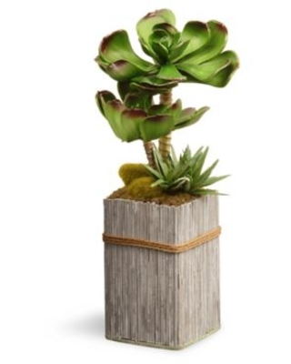 "National Tree Company® 11"" Artificial Garden Accents Succulent Plant in Wood Planter"