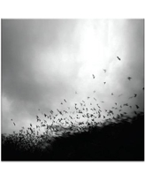 "PHLA ""Without You My Whole World Comes Apart"" by Andy Lee Print on Wrapped Canvas 46PH - P26 Size: 40"" H x 40"" W x 1.5"" D"