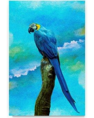 """Bay Isle Home 'Blue Parrot' Graphic Art Print on Wrapped Canvas BYIL5636 Size: 32"""" H x 22"""" W"""