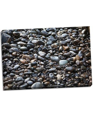 Ebern Designs 'Pebble Patch II' Photographic Print on Wrapped Canvas BI050316