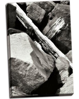 Millwood Pines 'Rocks and Wood II' Photographic Print on Wrapped Canvas BI055806