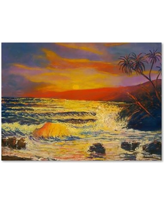 """Trademark Fine Art """"Maui Sunset"""" by Manor Shadian Painting Print on Wrapped Canvas MA0794-C Size: 35"""" H x 47"""" W x 2"""" D"""