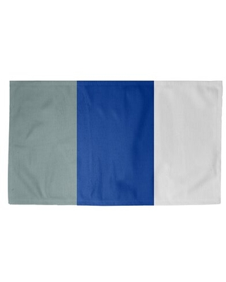 Dallas Football Blue/White Area Rug East Urban Home Rug Size: Rectangle 3' x 5', Backing: Yes