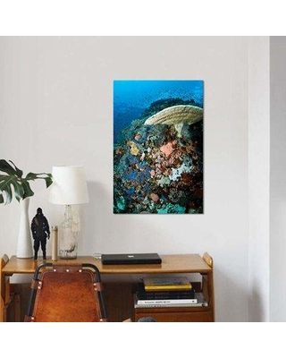 """East Urban Home 'Reef Scene with Corals and Fish Komodo Indonesia' Photographic Print on Canvas EBHR3988 Size: 26"""" H x 18"""" W x 0.75"""" D"""