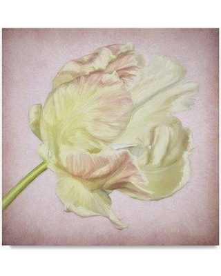 """Ophelia & Co. 'Pink Parrot Tulip Painting III' Print on Wrapped Canvas OPHL9620 Size: 35"""" H x 35"""" W"""