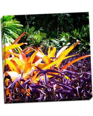 """Bay Isle Home 'Tropical Garden II' Photographic Print BI114383 Size: 24"""" H x 24"""" W x 0.75"""" D Format: Wrapped Canvas"""