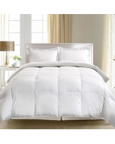 Royal Majesty 1000-Thread Count Egyptian Cotton Goose Down Comforter, White