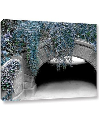 """Latitude Run Trefoil Winter Photographic Print on Wrapped Canvas LTRN5810 Size: 14"""" H x 18"""" W"""