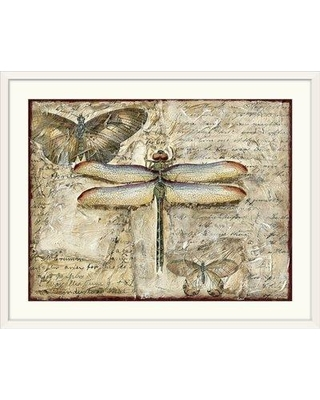 """Great Big Canvas 'Poetic Dragonfly II' Chariklia Zarris Graphic Art Print 1138303_1 Size: 20"""" H x 24"""" W x 1"""" D Format: White Framed"""