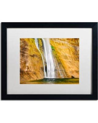 """Trademark Art 'Ribbons' by Michael Blanchette Framed Photographic Print ALI3952-B1 Matte Color: White Size: 16"""" H x 20"""" W x 0.5"""" D"""