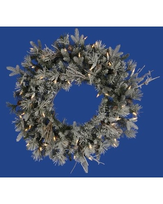 """Frosted Whistler Fir Christmas Lighted 24"""" Lighted PVC Wreath"""