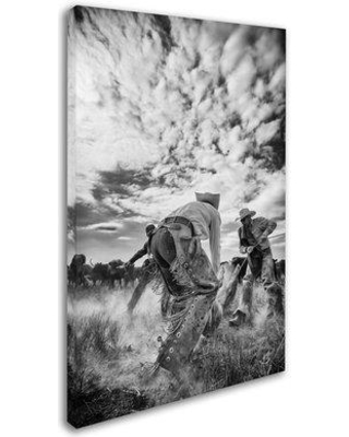 """Trademark Fine Art 'Dust' Photographic Print on Wrapped Canvas, Canvas & Fabric in White/Black, Size 19"""" H x 12"""" W x 2"""" D   Wayfair ALI7954-C1219GG"""