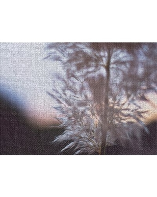 Spectacular Sales For Blurred Out 234 Gray Area Rug East Urban Home Rug Size Rectangle 2 X 4